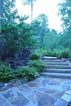 Stone for back patio