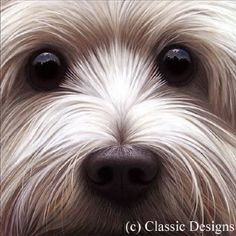 Painting of a westie