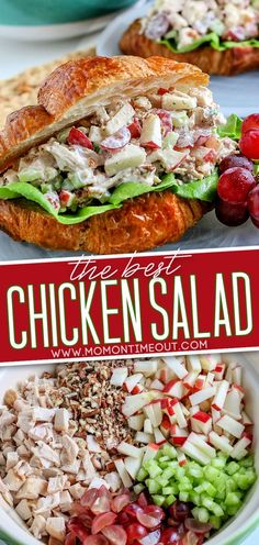 This easy Chicken Salad is always a favorite no matter how it's served! Delicious on its own, this easy chicken salad recipe can also be enjoyed on a croissant, in a wrap, or served in a lettuce cup. You seriously can't go wrong! Chicken, apples, grapes, pecans and celery are tossed in a flavorful, creamy dressing that takes just minutes to prepare! // Mom On Timeout #chickensalad #chicken #chickenrecipes #saladreipes #chickensaladsandwich #sandwich #sandwichrecipes Grape Recipes, Easy Salad Recipes, Healthy Recipes, Chicken Salad With Grapes, Chicken Salad On Croissant, Chicken Salad Wraps, Best Chicken Salad Recipe, Can Chicken Recipes, Chicken Sandwich Recipes