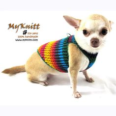 Bohemian Chic Dog Harness Puppy Collar D ring Cat by myknitt  #collar #diy #tagt #colorful #pets
