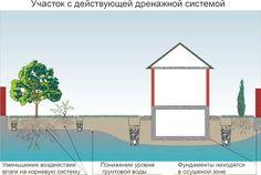 Дренаж участка -Глубинный дренаж Для его сооружения | Стройка и ремонт