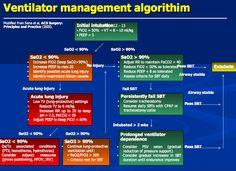 Ventilator Management Algorithm