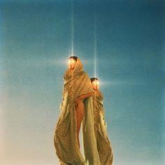 COYOTE - Neil Krug