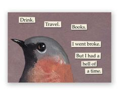 This is Wonderful Magnet Bird Humor by MincingMockingbird