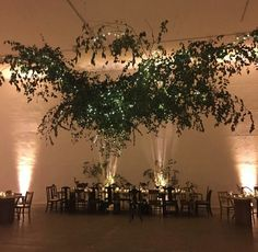 T&T Farm Tables and Bar Rentals based in PA provides rustic and elegant table rentals for your special event. Farm Tables, Elegant Table, Special Events, Rustic, Bar, Table Decorations, Home Decor, Country Primitive, Decoration Home
