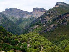 Sierra de las Nieves , Malaga