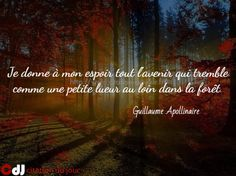 http://www.citation-du-jour.fr/citations-guillaume-apollina…