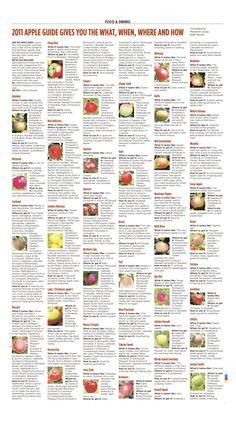 Maine apple picking chart!