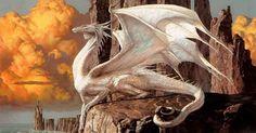 Le dragon est une créature mythologique fascinante. Dans de nombreuses civilisations à travers le monde, on retrouve des créatures reptiliennes possédant des caractéristiques plus ou moins similaires, désignées comme étant des dragons, bien ...