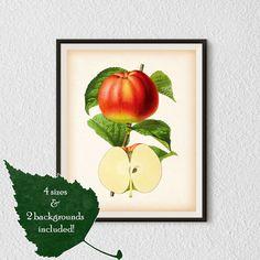 Kitchen art, Apple print, Kitchen printable art, Apple art, Fruit download, Home wall art, Fruit wall decor, Instant download print, #37