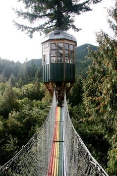 Cedar Creek Treehouse - Mount Rainier National Park, Washington State Maybe while I'm in Wa I might see this maybe Oh The Places You'll Go, Places To Travel, Places To Visit, Treehouse Hotel, Parque Natural, Mount Rainier National Park, Evergreen State, Cedar Creek, Adventure Is Out There