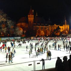 Ice+skating+in+Budapest