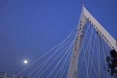 Puente Matute Remus. Foto Carlos Díaz Corona.  Diseño Arquitectónico Miguel Echauri y Álvaro Morales  www.echaurimorales.com