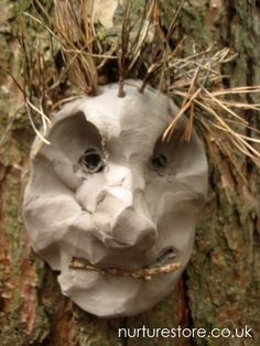 landart with kids - clay sculpture on trees Land Art, Forest School Activities, Nature Activities, Tree Sculpture, Clay Sculptures, Kids Clay, Tree Faces, Clay Faces, Nature Crafts