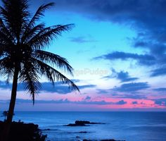 Tropical Island Pretty Pink Blue Sunset Landscape