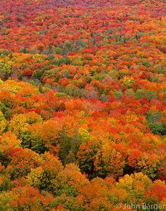 Superior National Forest Minnesota | Superior National Forest, Minnesota | John Barger Photography