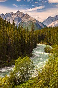 Maligne River, Jasper N.P.
