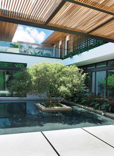 Christopher Cawley Landscape Architecture LLC / CCLA is a full service consulting practice with projects located throughout Miami, Miami Beach, and South Florida. Modern Zen House, Modern Tropical House, Tropical Houses, Exterior Design, Interior And Exterior, Linear Fireplace, Pond Design, Garden Design, Florida Design