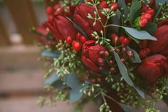 Red tulips and berries for bouquet for Christmas Eve wedding