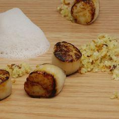 Pétoncles poêlés, couscous de noix du Brésil à l'orange sanguine, lait de coco au gingembre