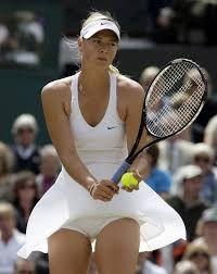 Картинки по запросу tennis sport