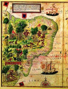 Carte du Brésil datant de 1519
