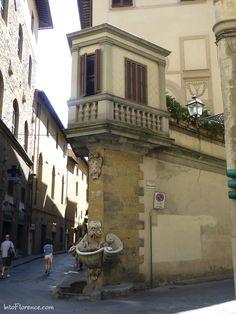 Fountain dello Sprone on the corner of via dello Sprone and Borgo San Jacopo.