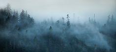 TJ Watt Moody Landscape Photo