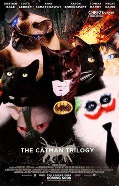 Para los amantes de los gatos :3