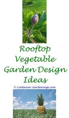 Amazing Bucket Gardening Tips   B And Q Garden Ideas.fruit Veggie Covers In Gardens  Ideas