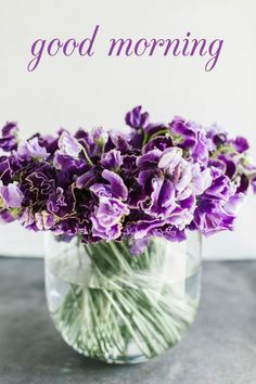 Good Morning Card for Media with Purple Flowers in a Vase