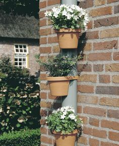 Drainpipe Plant Pots at STORE. Brighten up your drainpipes with our set of 3 natty planters that each has a built-in a. Front Door Plants, Window Plants, Potted Plants, Plant Pots, Small Gardens, Outdoor Gardens, Vertical Gardens, Diy Flowers, Flower Pots