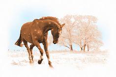 'Schneewalzer' von Dirk h. Wendt bei artflakes.com als Poster oder Kunstdruck $18.03