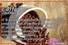 Caffè (Coffea arabica) E' la bevanda più diffusa al mondo; ricca di caffeina, sostanza in grado di stimolare il sistema nervoso. E' antiossidante, stimola l'apparato intestinale e cardiovascolare ; ha un effetto termogenetico e contribuisce al mantenimento del peso corporeo