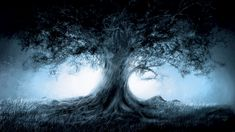 Fantasy Magic Tree Art HD Wallpapers - High Definition Wallpapers