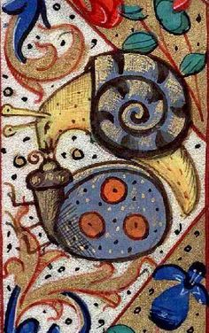 snails in love
