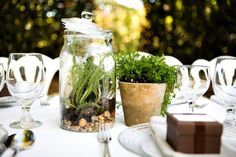 Potted plants make for a fresh and inexpensive centerpiece. Group in clusters of three.