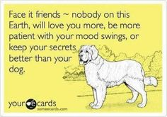 Dogs show emotions better than we do.