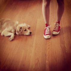 pup and red chucks