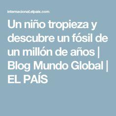 Un niño tropieza y descubre un fósil de un millón de años   Blog Mundo Global   EL PAÍS