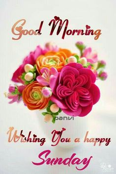 624 Best Sunday Morning Greetings Images In 2019 Good Morning