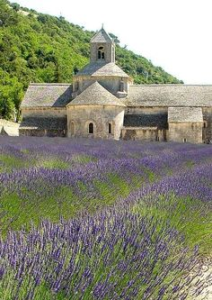 """""""Abbaye Notre-Dame de Sénanque"""" - Sénanque Abbey near Gordes in the département of the Vaucluse in Provence, France.  ...just beautiful...and I still can smell the lavender"""