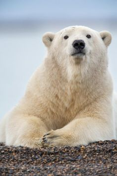 100 Favorites from 2012 - Alaska Photography Blog