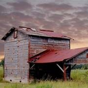 """The Old Hot Barn """"This picture of an old tobacco curing barn was photographed by Robert B. Davis near Timmonsville, SC. Robert tells us that 'this tobacco barn is a disappearing structure being replaced by movable metal buildings. Tobacco was once the main crop of the Pee Dee area, but is now being replaced by cotton. This is still a functioning barn and can be seen on Hill Road, near Timmonsville."""" (2006)"""