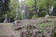 Monte Lemerle 1233 m.