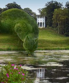 Topiary Cat, done by John Brooker, a retiree aged 75 who lives in Norfolk, UK. Topiary Cat Drinking from a Lake by Rich Saunders Topiary Garden, Cat Drinking, Drinking Water, Parcs, Dream Garden, Lake Garden, Yard Art, Garden Inspiration, Travel Inspiration