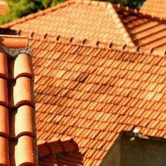 Rooftops of Molo Lozna