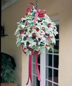 How to plant an Ivy Kissing Ball from English Creek Gardens. This is pretty! Christmas Balls, Christmas Holidays, Christmas Decorations, Holiday Decorating, White Christmas, Merry Christmas, Decorating Ideas, Xmas, Decor Ideas