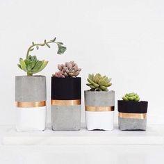 Inspiração de vasinhos de cimento pra suas suculentas #decor #decoracao #decoration #plantas #suculentas #boatarde #inspiracao #pinterest