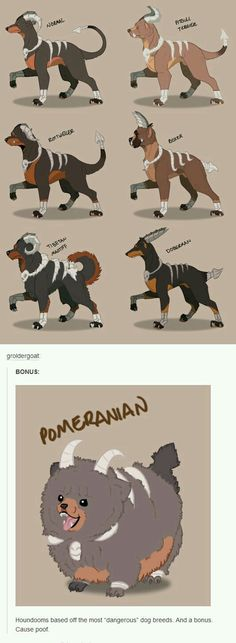 houndoom variations - Funny Pokemon - Funny Pokemon meme - - The post houndoom variations appeared first on Gag Dad. Pokemon Fusion, Pokemon Real, Pokemon Fan Art, Cute Pokemon, Pokemon Pokemon, Pokemon Breeds, Pokemon Memes, Pokemon Pictures, Funny Pictures